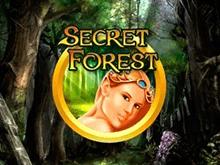 Скачать в Вулкане Secret Forest