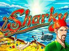 Sharky с бонусами в Вулкане