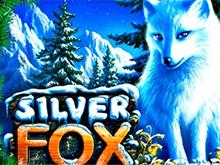 Скачать в Вулкане Silver Fox