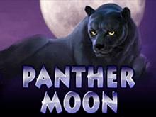 Игровые автоматы Вулан на деньги Panther Moon