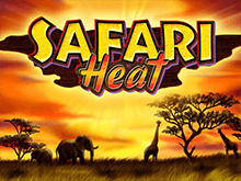 Автоматы Вулкан с бонусом Safari Heat