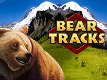Медвежьи Следы в Вулкане с бонусами