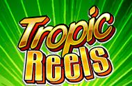 Автомат Тропические Барабаны с бонусом