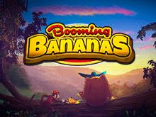 Booming Bananas – играйте в азартном казино