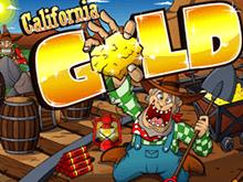 California Gold от Microgaming – онлайн-игра с настоящим сюжетом
